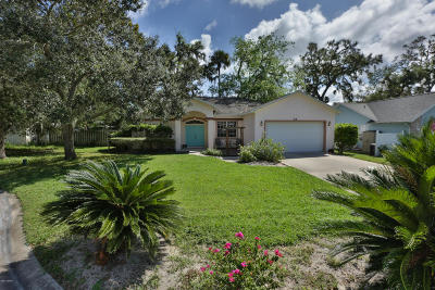 Volusia County Single Family Home For Sale: 14 Spiveys Court