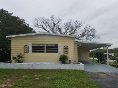 Volusia County Single Family Home For Sale: 100 Barefoot Trail