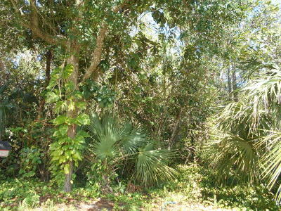 Volusia County Residential Lots & Land For Sale: 731 Santa Fe