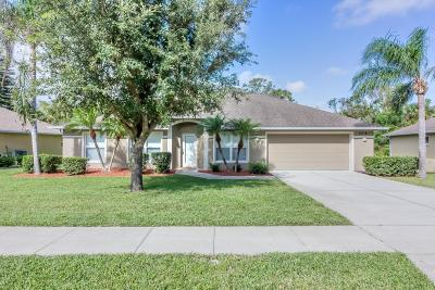 Volusia County Single Family Home For Sale: 704 Branch Drive