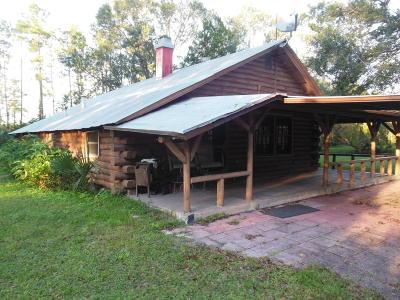 Port Orange Single Family Home For Sale: 2103 Tomoka Farms Road