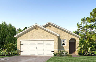New Smyrna Beach Single Family Home For Sale: 419 Armoyan Way