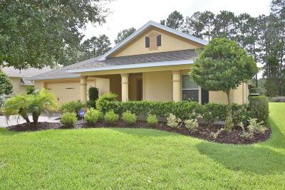 Ormond Beach FL Single Family Home For Sale: $384,900