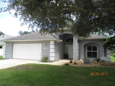 New Smyrna Beach Single Family Home For Sale: 2809 Turnbull Estates Drive