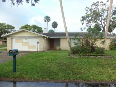 Daytona Beach Single Family Home For Sale: 1190 Golfview Drive