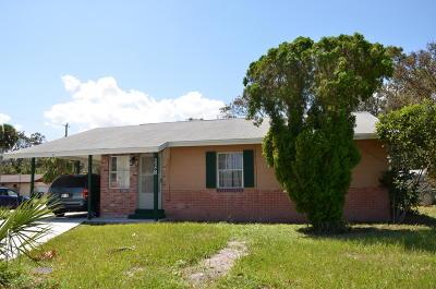 Daytona Beach Single Family Home For Sale: 228 Walnut Street