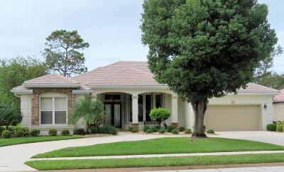 Daytona Beach Single Family Home For Sale: 733 Sea Duck Drive
