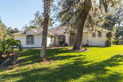 Ormond Beach Single Family Home For Sale: 4151 Sanora Lane