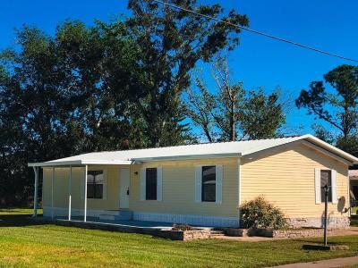 Port Orange Single Family Home For Sale: 5417 Wood Street