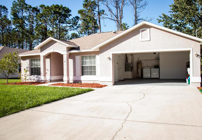 Palm Coast Single Family Home For Sale: 15 Llestone Path