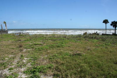 Ponce Inlet Residential Lots & Land For Sale: 4741 S Atlantic Avenue