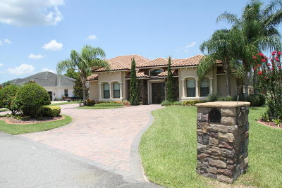Spruce Creek Fly In Single Family Home For Sale: 1721 Baron Court