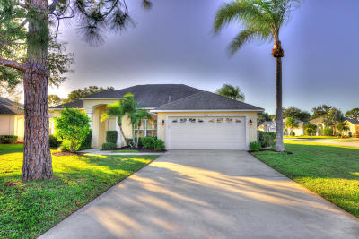 Spruce Creek Fly In Single Family Home For Sale: 2000 Steamboat Ridge Court