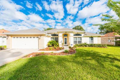 Palm Coast Single Family Home For Sale: 9 Phoenix Lane