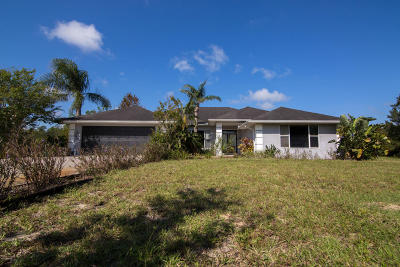 New Smyrna Beach Single Family Home For Sale: 1451 Raylyn Drive