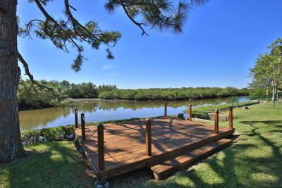 New Smyrna Beach Single Family Home For Sale: 12 Oak Tree Drive