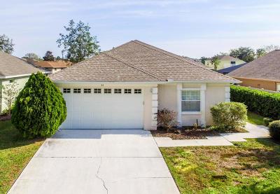 Palm Coast Single Family Home For Sale: 44 Columbia Lane