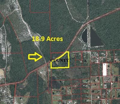Volusia County Residential Lots & Land For Sale: 4160 Pioneer Trail
