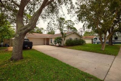 South Daytona Single Family Home For Sale: 1821 Eastern Road