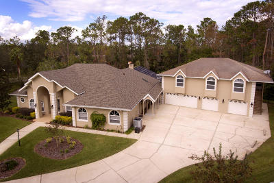 Ormond Beach Single Family Home For Sale: 4 Pine Look