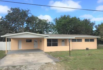 New Smyrna Beach Single Family Home For Sale: 812 Oleander Street