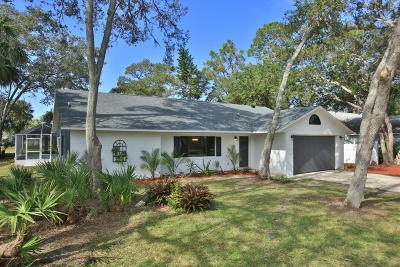 Port Orange Single Family Home For Sale: 5920 Peggy Drive