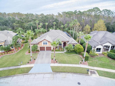 Port Orange Single Family Home For Sale: 6721 Merryvale Lane
