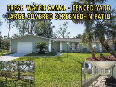 Palm Coast Single Family Home For Sale: 56 Flamingo Drive