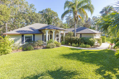 Port Orange Single Family Home For Sale: 5820 Boggs Ford Road
