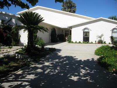New Smyrna Beach Single Family Home For Sale: 1617 Beacon