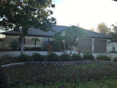 Palm Coast Single Family Home For Sale: 53 Faircastle Lane