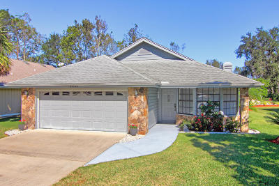 Spruce Creek Fly In Single Family Home For Sale: 3245 Vail View Drive