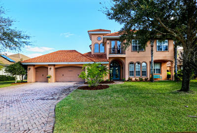 Ormond Beach Single Family Home For Sale: 421 Wingspan Drive