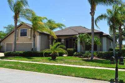 Port Orange Single Family Home For Sale: 6625 Merryvale Lane