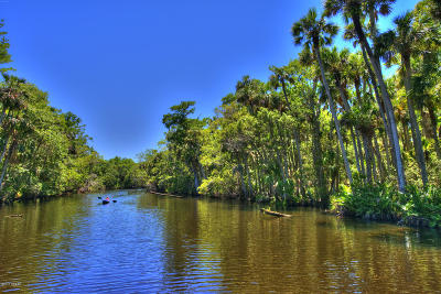 Volusia County Residential Lots & Land For Sale: 1785 Taylor Road