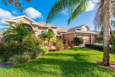 Port Orange Single Family Home For Sale: 3760 Fiano Drive