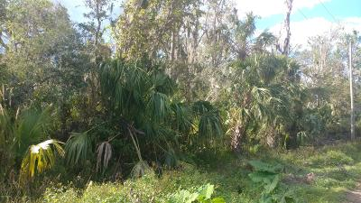 Volusia County Residential Lots & Land For Sale: Hazel Bishop Drive