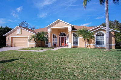 Port Orange Single Family Home For Sale: 6148 Half Moon Drive