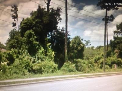 Port Orange Residential Lots & Land For Sale: 3830 Clyde Morris Boulevard