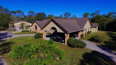 New Smyrna Beach Single Family Home For Sale: 1215 Williams Road