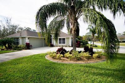 Hunters Ridge Single Family Home For Sale: 4 Meadow Ridge View