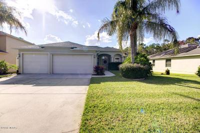Port Orange Single Family Home For Sale: 6214 Tortoise Creek Lane