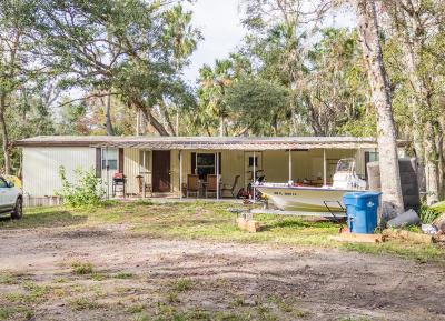 New Smyrna Beach Single Family Home For Sale: 1229 Jenny Lynn Lane