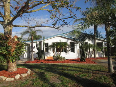 Volusia County Single Family Home For Sale: 415 Golf Boulevard