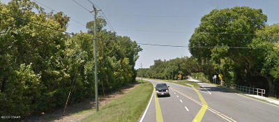 Residential Lots & Land For Sale: Big Tree Road