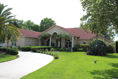 Port Orange Single Family Home For Sale: 1971 Country Club Drive