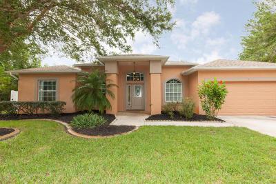 Palm Coast Single Family Home For Sale: 7 Freneau Lane