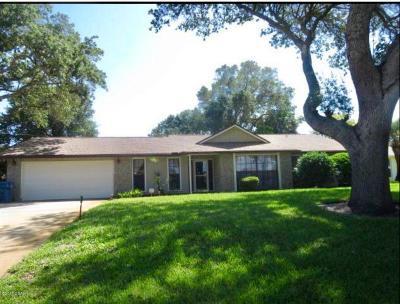 Ormond Beach Single Family Home For Sale: 2899 John Anderson Drive