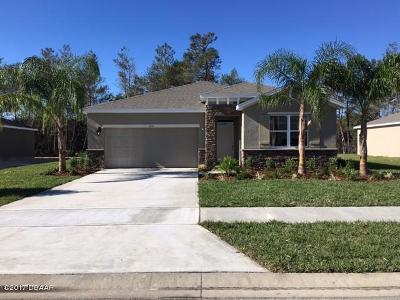 Volusia County Single Family Home For Sale: 230 River Vale Lane