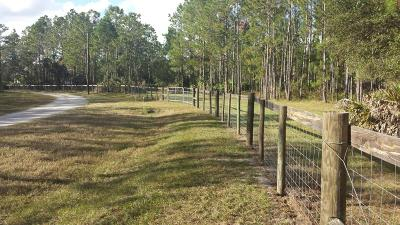 Volusia County Residential Lots & Land For Sale: 190 Ashby Cove Lane